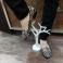 Zapatos estilo sleepers piel negra estampada 117548